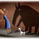 Как избавиться от страхов? Часть 1